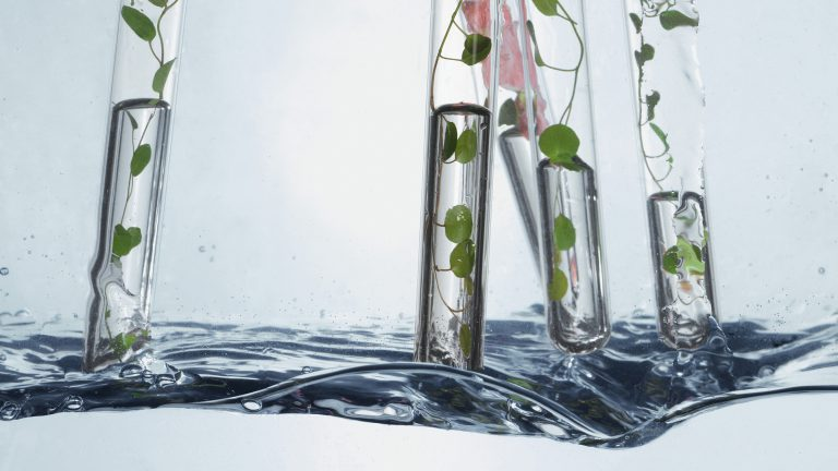 energy & moisture & Feuchtigkeitspflege